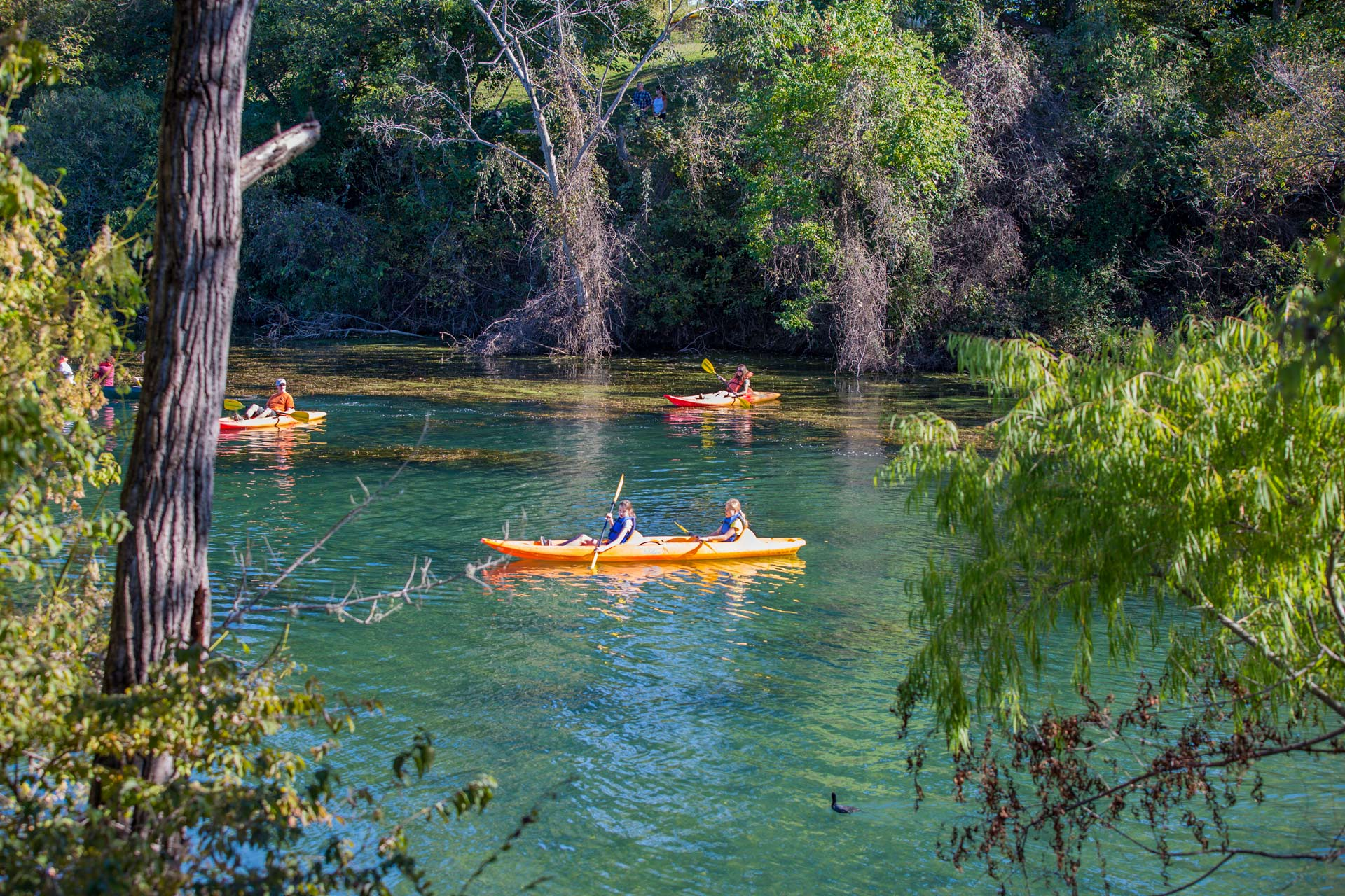 Rio Colorado no centro de Austin, no Texas